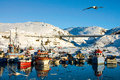 Colorful quiet harbor in arctic region seagulls flying over Royalty Free Stock Photography