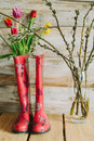 Colorful rain boots with spring flowers and willow branches in w