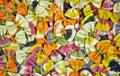 Colorful rainbow pasta bows Royalty Free Stock Photo