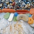 Colorful remains polished by the sea on the beach Royalty Free Stock Photo