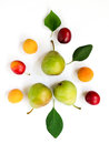 Colorful ripe fruits and leaves - pears, plums, apricots lined in composition on a white background. Fruit Pattern.