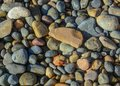 Colorful rocks on beach