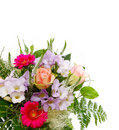 Colorful Rose Bouquet Isolated .