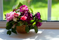 Colorful roses on window sill during the sunny day Royalty Free Stock Photo