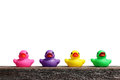 Colorful rubber ducks Royalty Free Stock Photo