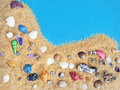 Colorful Sea Shells on a Sand Bed Stock Images