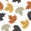 Colorful seamless pattern with maple leaves isolated on white ba