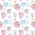 Colorful seamless shell pattern