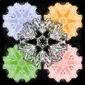 Colorful set of pastel floral ornamental designs. Royalty Free Stock Photo