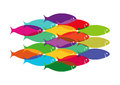 Colorful shoal of fish illustration isolated on white background Royalty Free Stock Photography