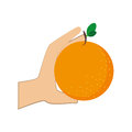 Colorful silhouette hand holding orange fruit