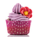Colorful single cupcake in purple Royalty Free Stock Images