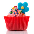 Colorful single cupcake in red and pink Stock Image