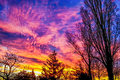 Colorful sky with red clouds and nature illustration beautiful winter sunrise day Royalty Free Stock Photography