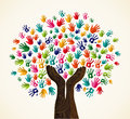 Colorful solidarity design tree multi cultural integration concept set vector file layered for easy manipulation and custom Royalty Free Stock Images