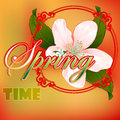 Colorful spring time scene background with blossom flower Royalty Free Stock Photo