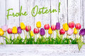 Colorful spring tulips on wooden background for easter Royalty Free Stock Photo