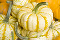 Colorful Squashes in a Street Market Royalty Free Stock Photo