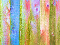 Colorful Stained Wood Texture ...