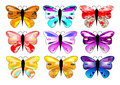 Colorful striking butterflies x 9 Stock Photos