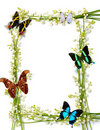 Colorful Summer Frame With Butterflies Royalty Free Stock Photography