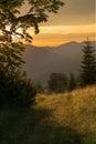 Colorful summer sunset. Carpathians, Ukraine. Royalty Free Stock Photo