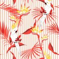 Colorful summer tropical jungle leaves with white macaw bird saemless pattern in vector suits for fashion ,fabric and all prints
