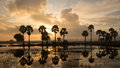 Colorful sunrise landscape with silhouettes of palm tree trees on chau doc city vietnam chaudoc city near cambodia is famous Stock Photos