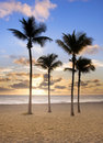 Colorful sunrise in Miami Beach Florida Royalty Free Stock Photo