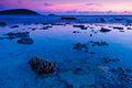 Colorful sunset of nai harn beach from phuket thailand Stock Images