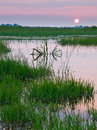 Colorful sunset over marshland Royalty Free Stock Photo