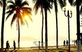 Colorful sunset or sunrise landscape with silhouettes of palm trees Royalty Free Stock Photo
