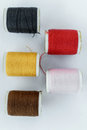 Colorful thread in spool on white background Stock Image
