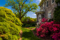 Colorful trees and bushes behind the mansion at Cylburn Arboretu Royalty Free Stock Photo