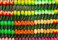 Colorful tulip flower magnets in amsterdam traditional hanging on souvenir shop counter Stock Image
