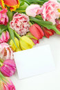 Colorful tulips with blank note Royalty Free Stock Images