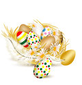 Colorful vector  easter eggs in nest with ferns on a white backg Royalty Free Stock Photo
