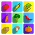 Colorful Vegetable Icon Set on Bright Background