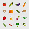 Colorful Vegetable Icon Set on White Background