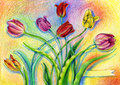 Colorful watercolor pencils tulips on artistic background