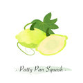 A Colorful watercolor texture vector healthy vegetable patty pan s