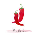 A Colorful watercolor texture vector healthy vegetable red chili