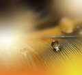 Colorful waterdrop artistic orange background and Stock Images