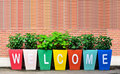 Colorful of the Welcome Stock Photography