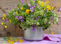 Colorful wildflowers in pot Royalty Free Stock Photo