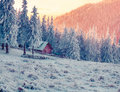 Colorful winter evening in the mountain farm. Royalty Free Stock Photo