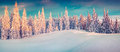 Colorful winter panorama of snowy mountains. Royalty Free Stock Photo