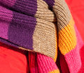 Colorful wool belcher Royalty Free Stock Image