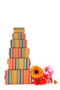 Colorful wrapped presents and flowers Royalty Free Stock Photos