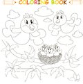 Coloring book bird family, chicks on nest